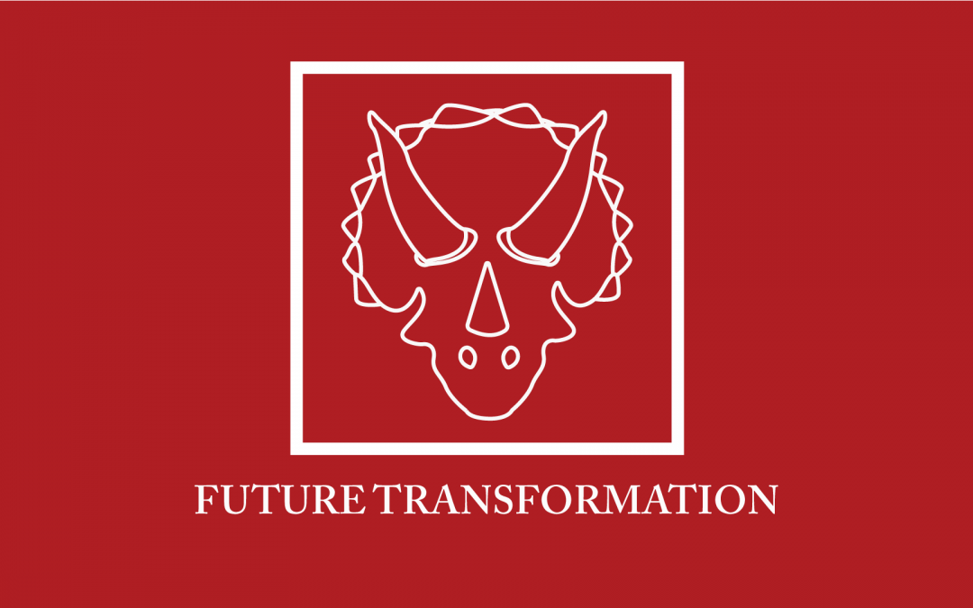 FUTURE TRANSFORMATION – WHO ARE WE